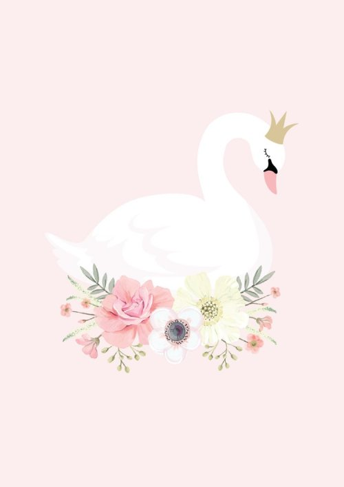 Swan_Princess_1024x1024