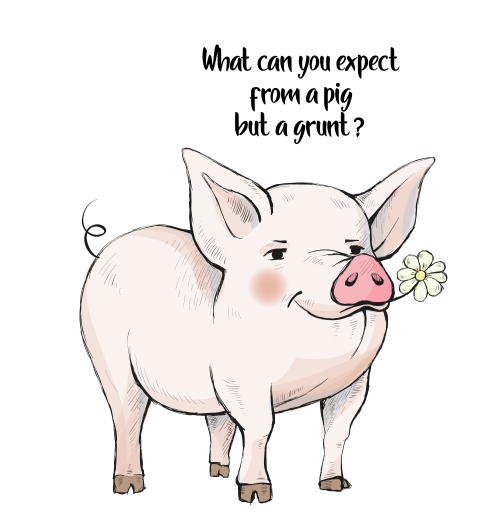What Can You Expect from a Pig.jpg